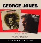 georgejones_picturemenothingever
