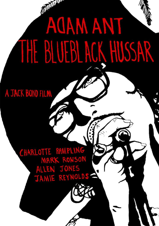 DVD_TheBlueblackBussar